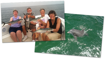 Enjoy the perfect trip with fishing or dolphin watching
